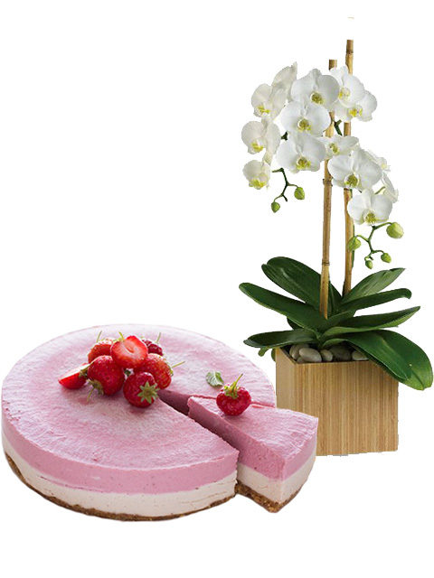 cheesecake con orchidea bianca